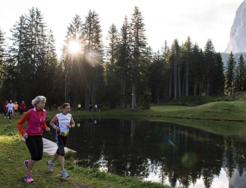 Summer fitness in the mountains: Running and Nordic Walking