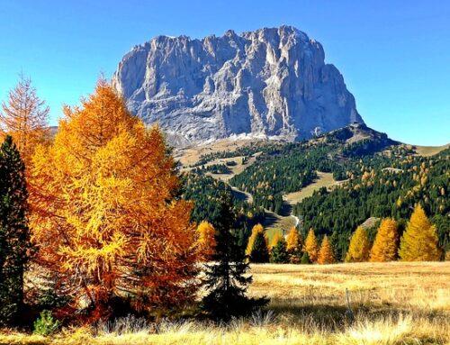3 good Reasons to visit Val Gardena in September